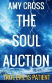 The Soul Auction by Amy Cross
